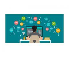 Ventajas de trabajar con un desarrollador web