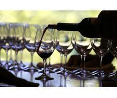 Aprendiendo sobre vinos