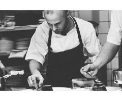 El curso de manipulador de alimentos y la hostelería